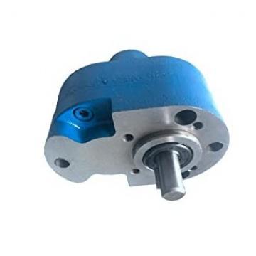 Pompa a molla olio per ingranaggi a vite senza fine adatta per STIHL MS290