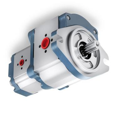 Idraulica Pompa a Ingranaggi Bg 3 Dimensioni 3 Senso Antiorario / Orario