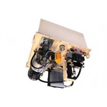 HYD Slice valvola di controllo direzionale 2 Bank 1/2 BSP 3/4 P + T 80 L/M D/A MOLLA RTN