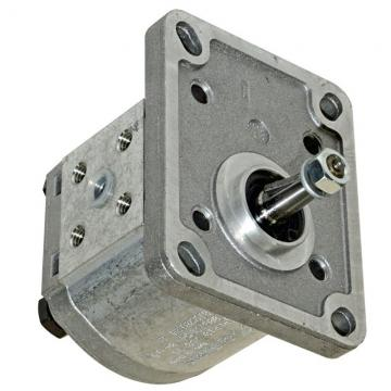 Pompa ad ingranaggi BG30-44