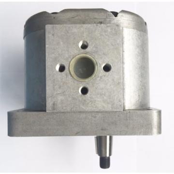 Idraulica Tecnica Pompa a Ingranaggi per Carrello Elevatore Forche / 9011