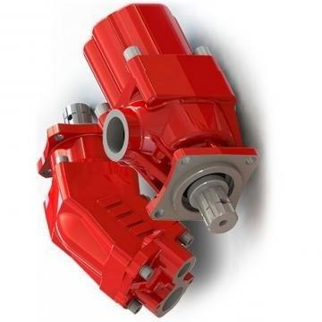 Originale Nuova Parker / Jcb Pompa Idraulica 8493T 20/914900 Prodotto IN Eu