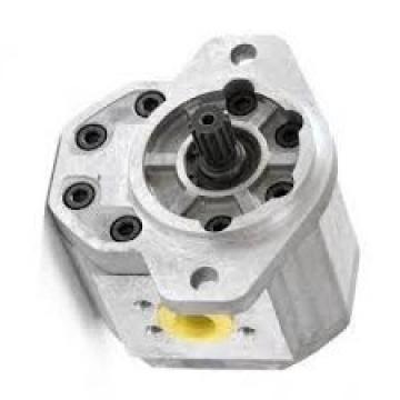 Originale Parker / Jcb 214 Doppio Pompa Idraulica 20/925337 Prodotto IN Eu