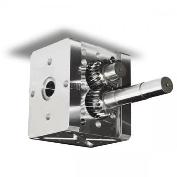 Pompa a ingranaggi DGD Fluid O Tech Corrente continua 24 V 4 bar 2 A 30 l/h